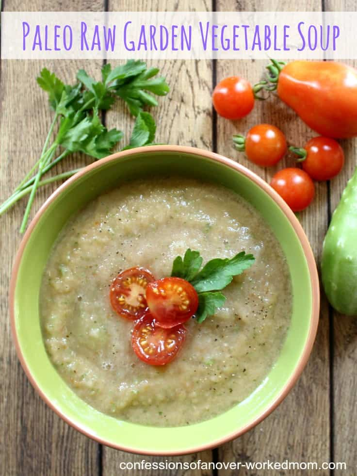 Delicious Raw Garden Soup Recipe That's Paleo