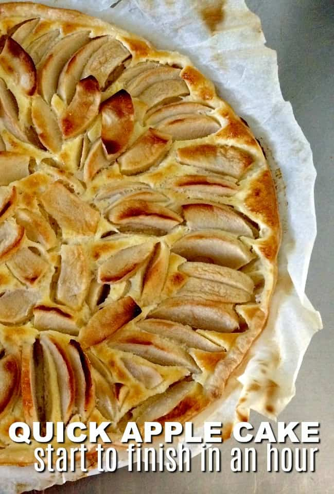 Quick Apple Cake Recipe for Unexpected Company