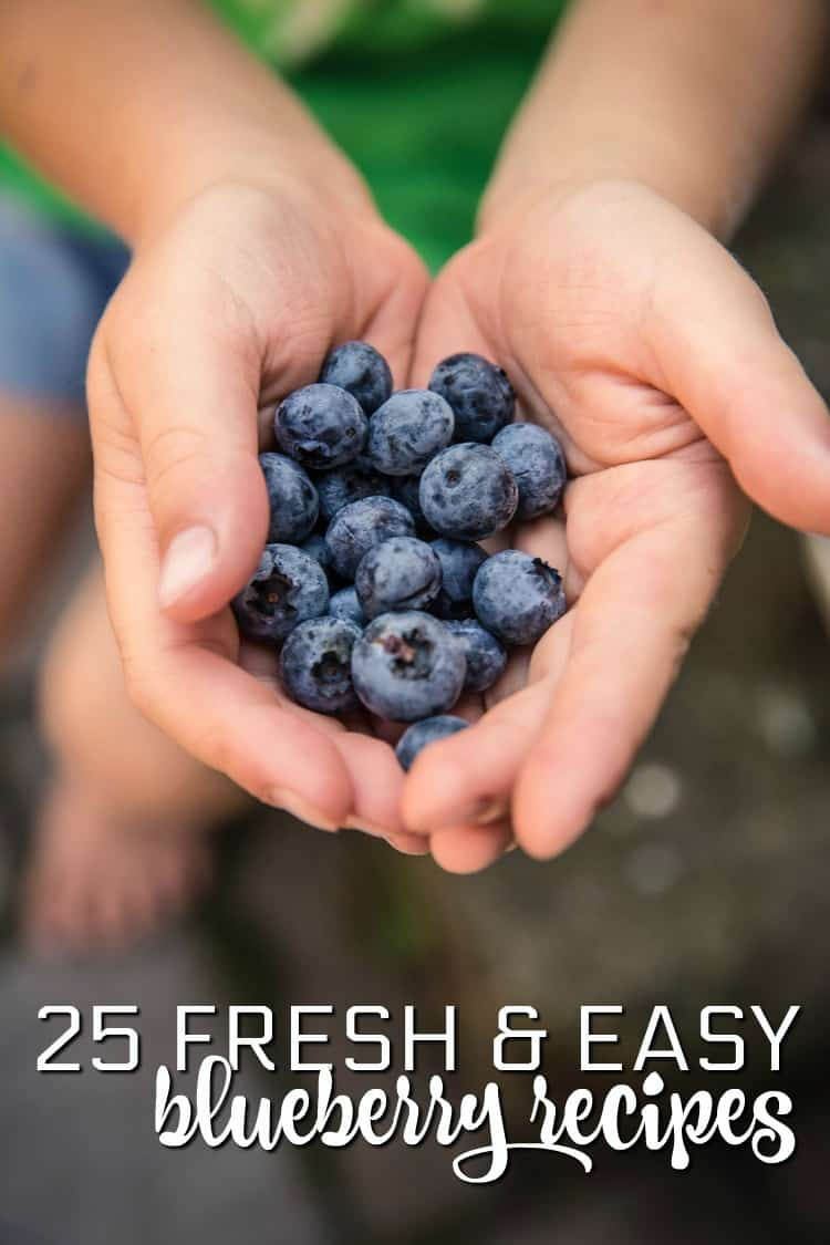 25 Fresh Blueberry Recipes: Blueberry and Cranberry Relish