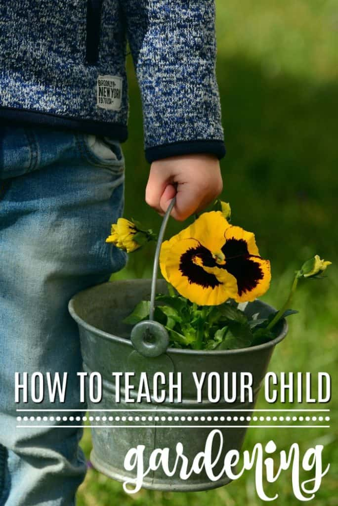How to Teach Science In The Garden to Your Child