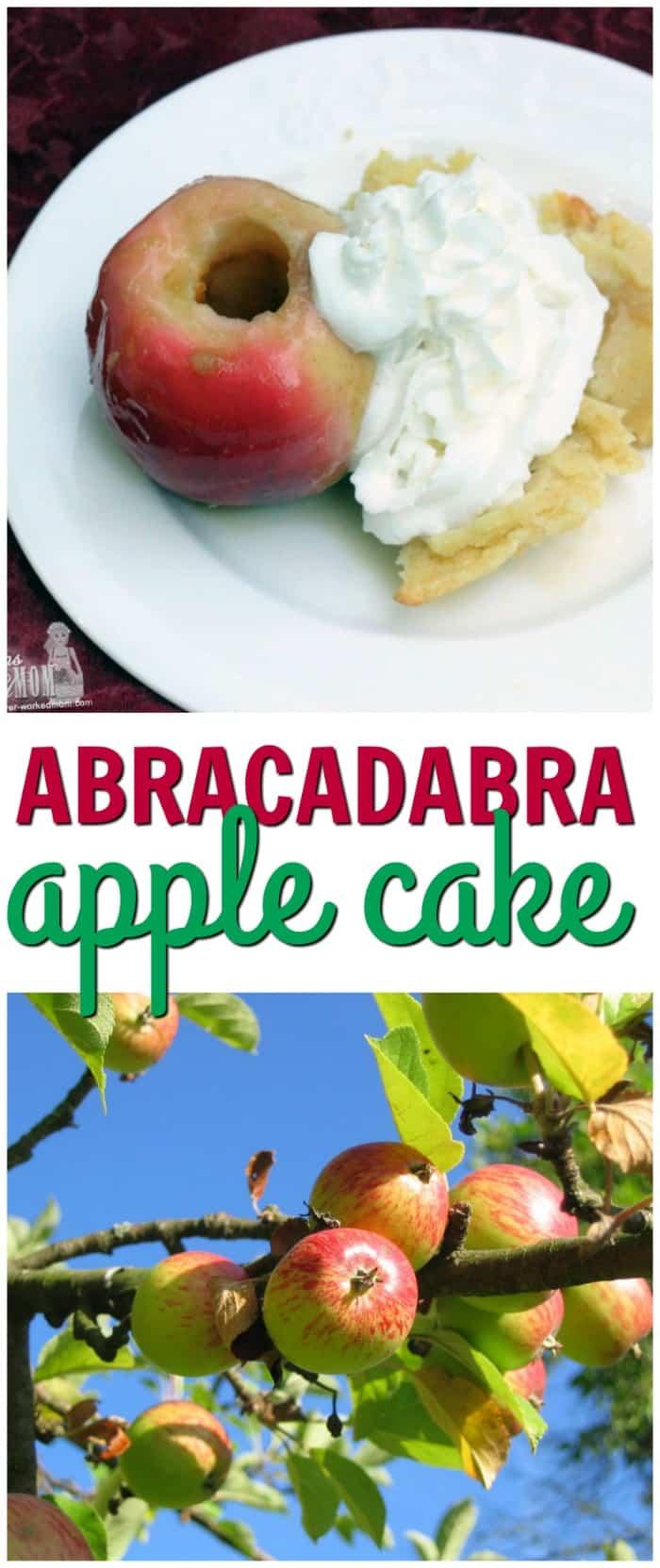 Easy Apple Recipes: Apple Abracadabra Cake