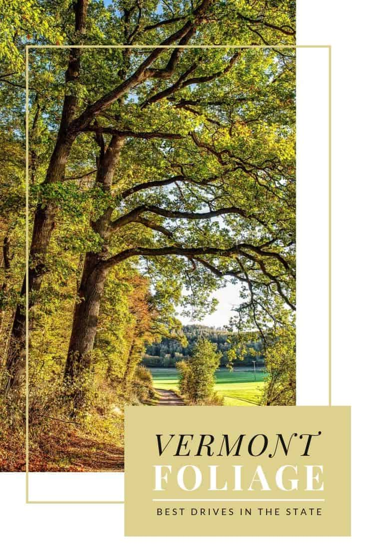 Best Vermont Foliage Drives and Scenic Stops to Enjoy