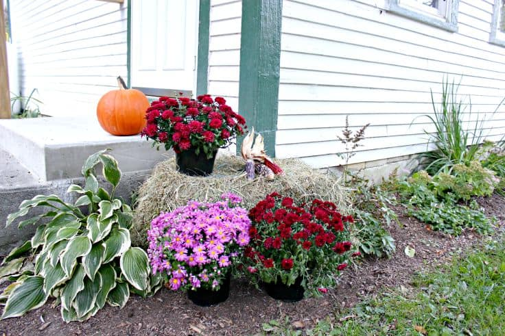 Natural Fall Decorating Ideas for the Door
