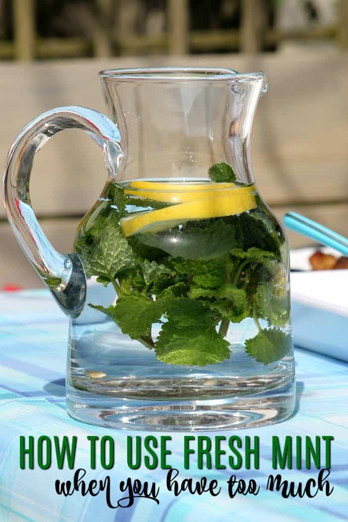 What To Do With Too Much Fresh Mint