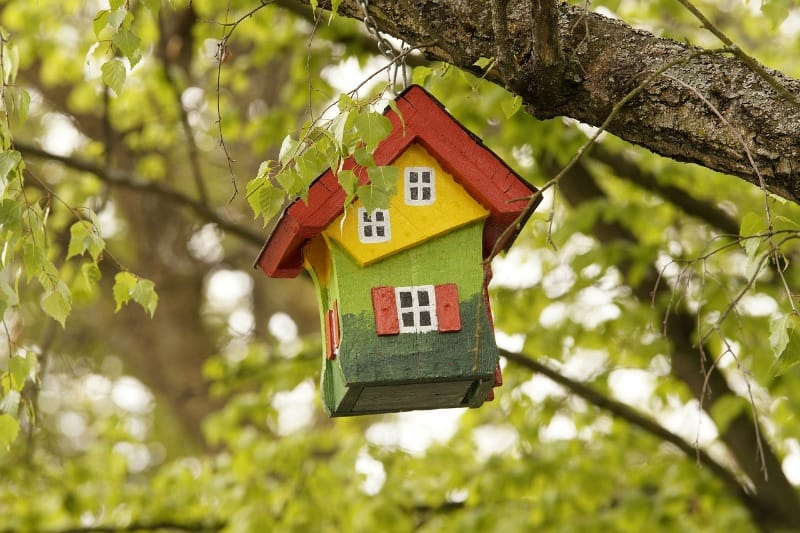 bird house hanging in a tree
